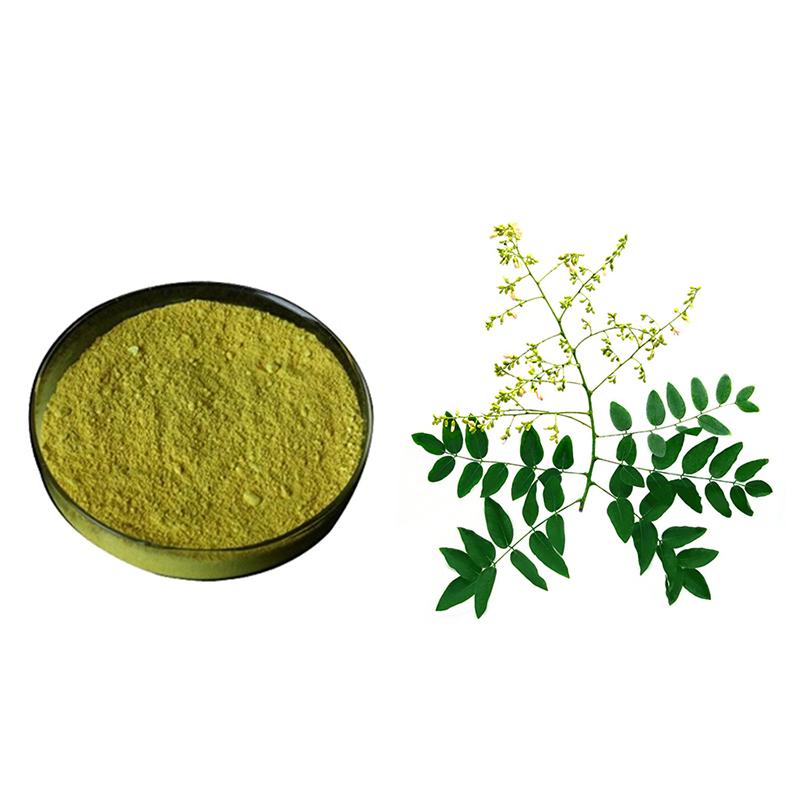 Botanical-Extract-Rutin-Quercetin-Powder-Sophora-Japonica-Extract-1