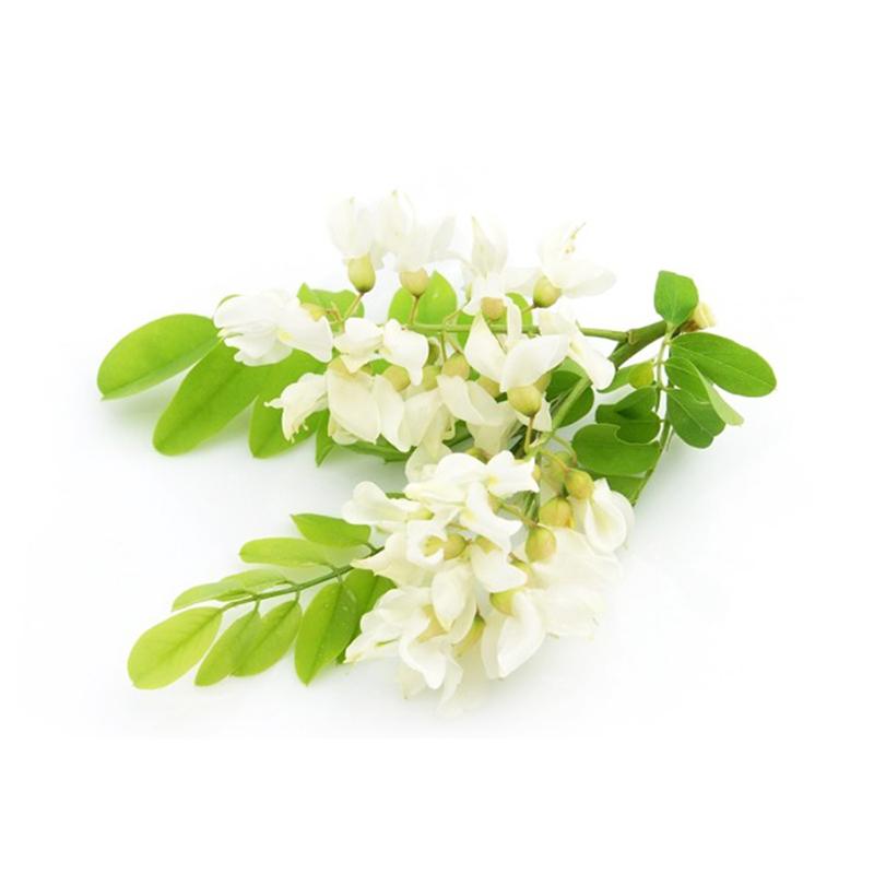 Botanical-Extract-Rutin-Quercetin-Powder-Sophora-Japonica-Extract-2