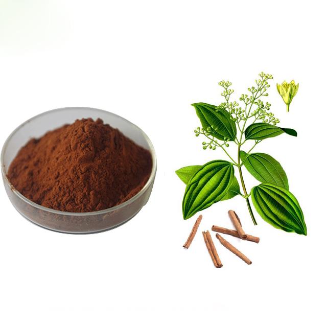 Cinnamon-extract