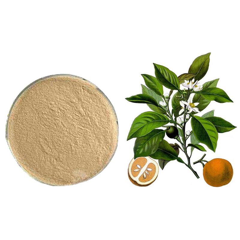 Plant-Extract-Hesperidin-Powder-Citrus-Aurantium-Extract-1